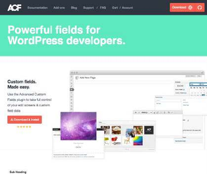 Advanced Custom Fields homepage