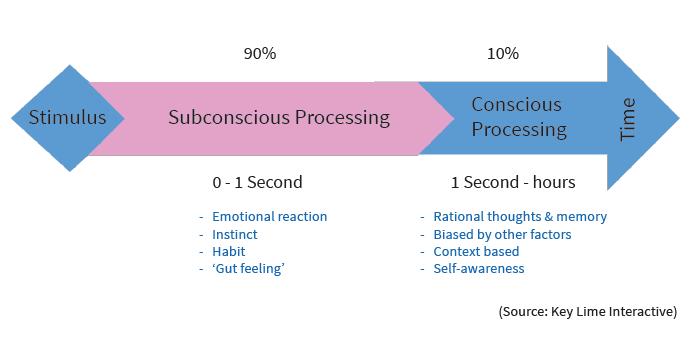 stimulus processing arrow diagram